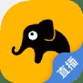 皮皮象电视直播app下载_皮皮象电视直播app最新版免费下载