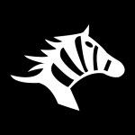 斑马快跑app下载_斑马快跑app最新版免费下载