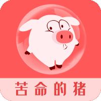 苦命的猪app下载_苦命的猪app最新版免费下载