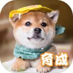 元气小狗app下载_元气小狗app最新版免费下载