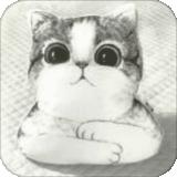 强哥在线抓娃娃app下载_强哥在线抓娃娃app最新版免费下载