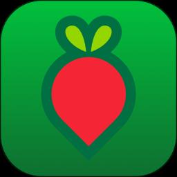 叮咚买菜app版下载_叮咚买菜app版2021最新版免费下载