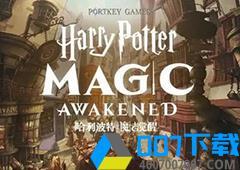 哈利波特魔法觉醒移速流怎
